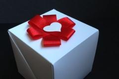 dovanoms (11)